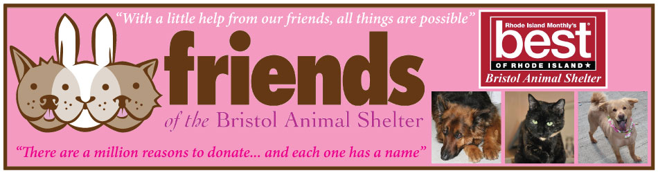 Friends of the Bristol Animal Shelter